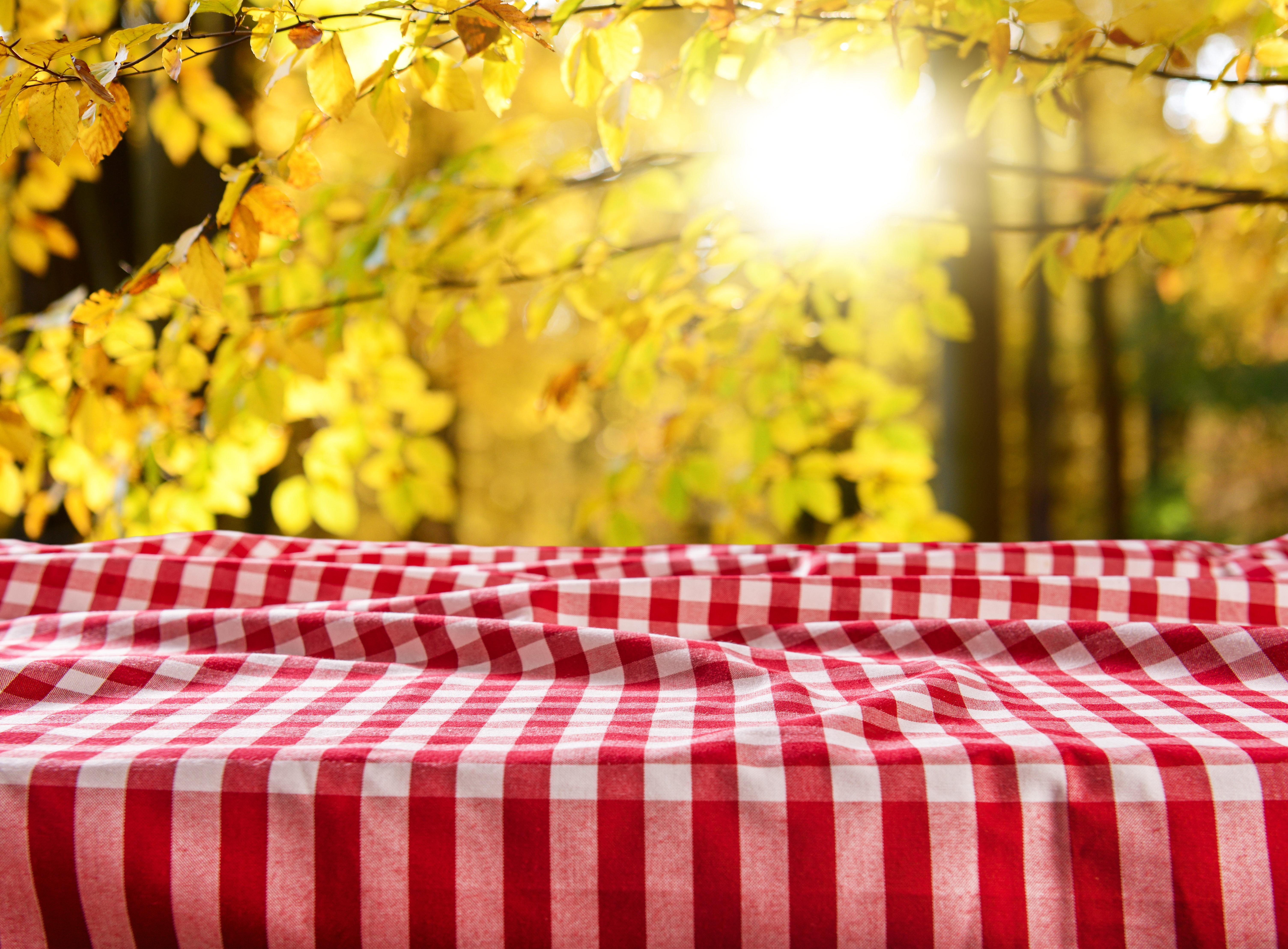 Confeccionar mantel Textiles Pastor